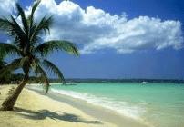 Ocho Ricos Jamaica-beach